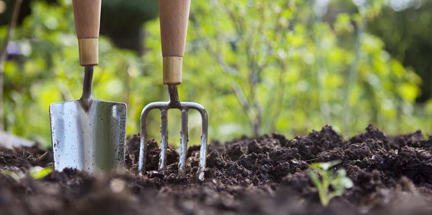 How to Care for Garden Tools - Cole Gardens